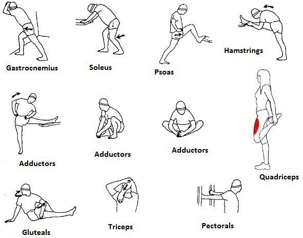 46 best physical therapy images on pinterest