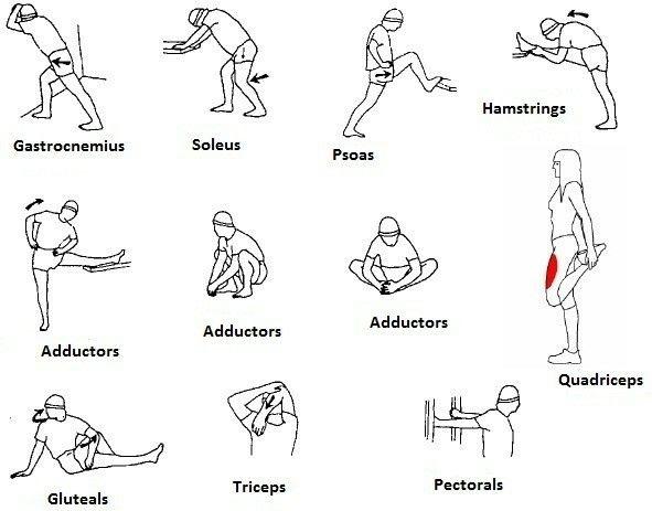 Les 46 meilleures images du tableau Physical Therapy sur
