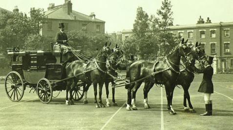 Hackney Horse | an elegant 4-up of Hackney Horses to a Park Drag