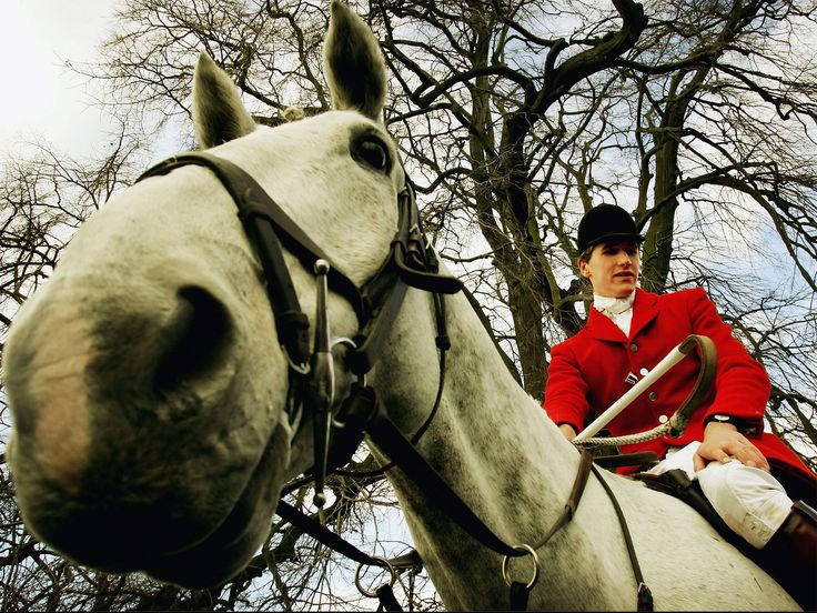 A pro-hunting group fronted by Otis Ferry is offering to supply canvassers to help Conservative candidates win parliamentary seats if they quietly agree to support repealing the fox-hunting ban.
