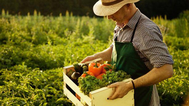 Australia's Farmers' Markets