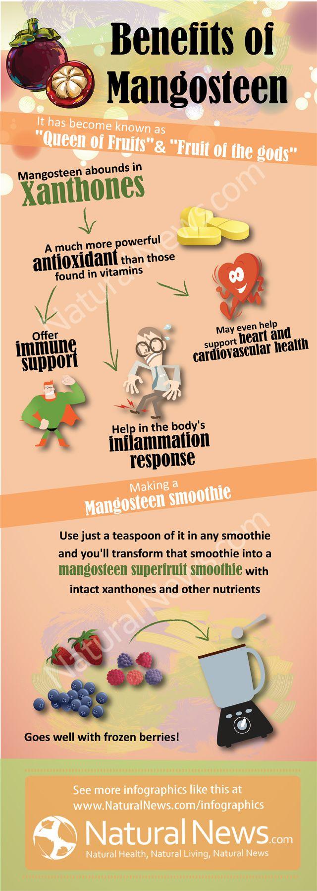 Health Benefits of Mangosteen, the Queen of Fruit. http://www.engineeredlifestyles.com/h/health-benefits-of-mangosteen.html #mangosteen #health