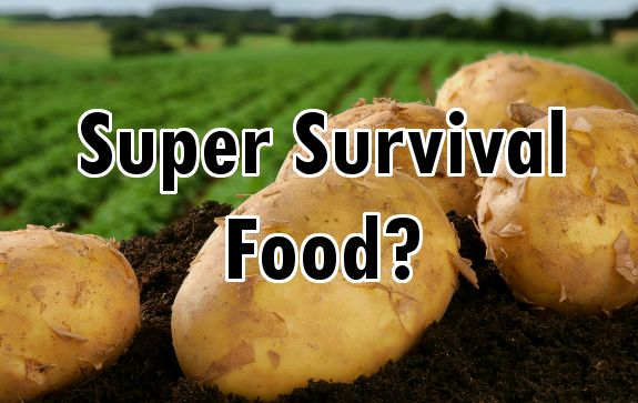 How Potatoes can Help you Survive Food Shortages and Boost Your Health
