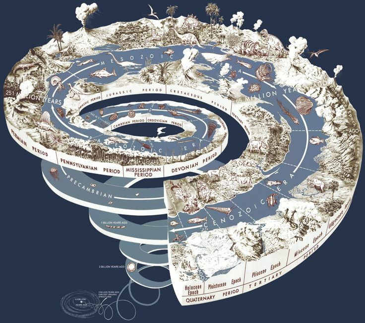 Geological time spiral: Illustrations Art, Natural History, Data Visual, Geology Time, Graphicdesign, Graphics Design, Earth, Infographic, Time Spirals