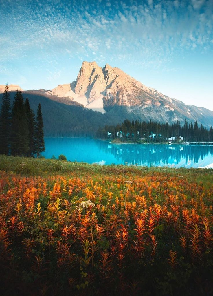 Pin by Jye Weng on 景 in 2020 Emerald lake canada