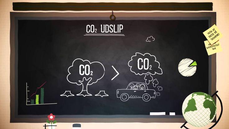Vidste du for eksempel at 18-20 % af alt det CO2 vi mennesker udleder kommer fra fældning af skov? Det er derfor geografer arbejder med bæredygtig forvaltning af regnskove, og undersøger hvordan lande kan skabe udvikling, uden at fælde skovene.