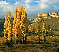 Google Image Result for http://www.tourismfreestate.org/images/stories/free_state_images/clarens_-_clarens_scenery.jpg