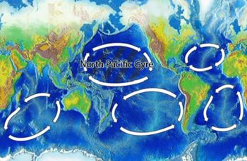 North_Pacific_Gyre_World_Map, the Pacific Trash Vortex, a disgrace to the world, high concentrates of plastic, chemical sludge and other debris trapped by the currents