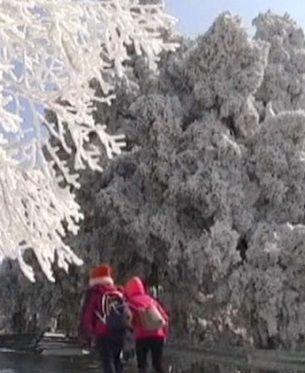 W Chinach spadł śnieg. Miejscami termometry pokazywały -43 st. C. http://tvnmeteo.tvn24.pl/informacje-pogoda/swiat,27/w-chinach-spadl-snieg-miejscami-termometry-pokazywaly-43-st-c,191666,1,0.html
