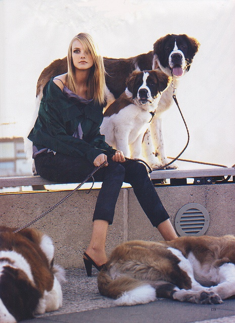 St. Bernards & Caroline Trentini by artemis.niarchos, via Flickr