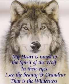 native american quotes about wolves | Newspaper Rock: The problem with Quileute werewolves