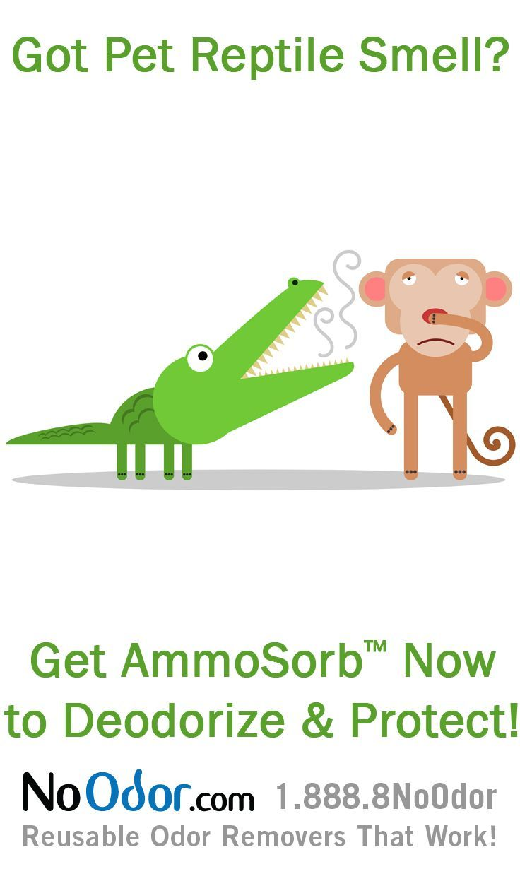 14 best ammonia smell solutions images on pinterest for Fish smell disease