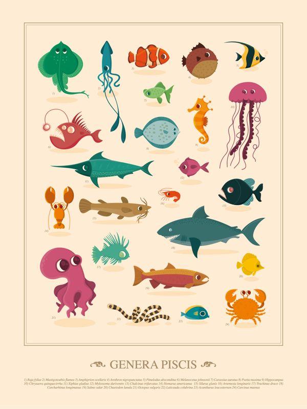 Cute fishes /// Genera Avium, Genera Piscis by Raquel Jove, via Behance