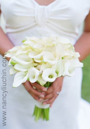 bridal bouquet of white miniature calla lilies