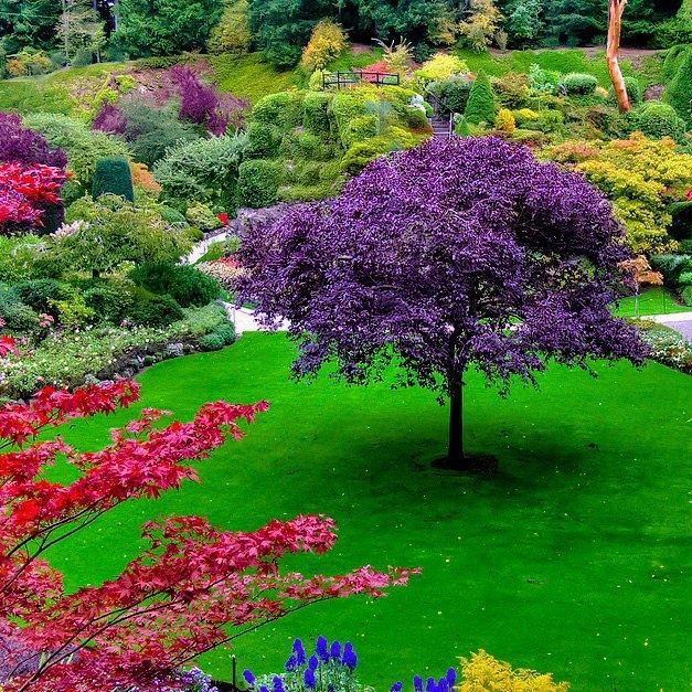 Beautiful garden - photo from mostbeautifulthings