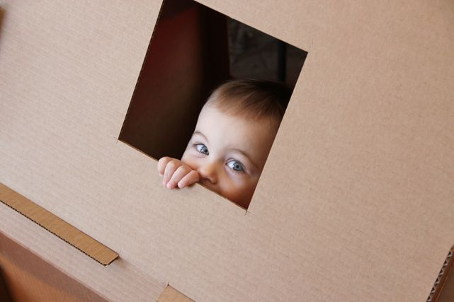 Project Little Smith: DIY: Cardboard Play House
