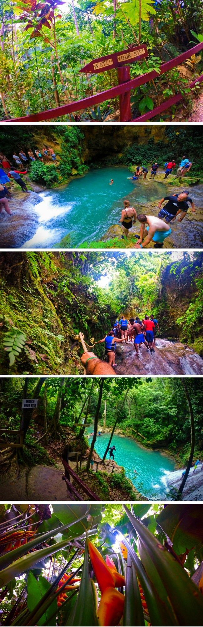 Jumping off waterfalls at the Blue Hole in Ocho Rios, Jamaica is an awesome jungle experience. 2traveldads.com