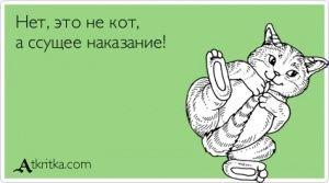 Аткрытка №86505: - atkritka.com