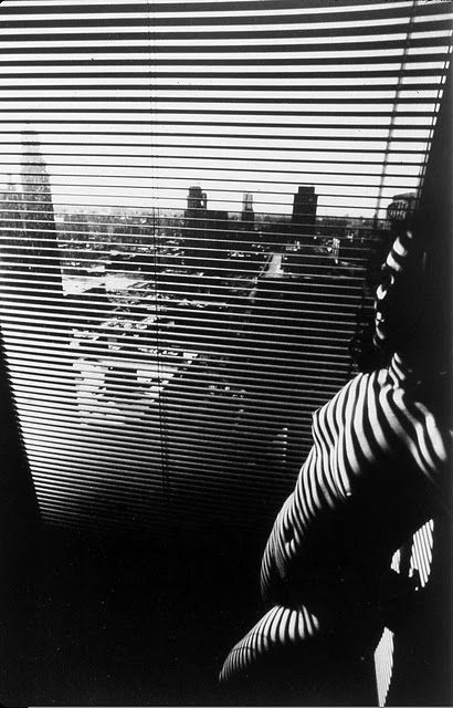 Lucien Clergue. From «Nu Zebre» series. Paris — New York, 1997-2007  [::SemAp FB || SemAp::]