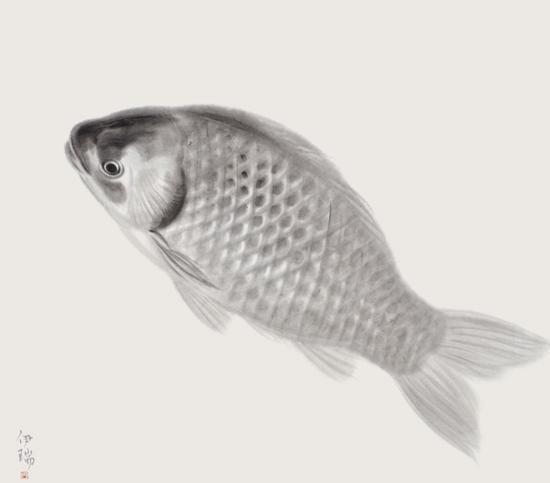 鱼系列2#