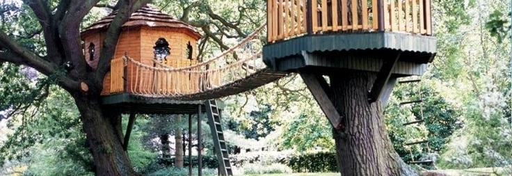 So you want to build a treehouse, how about a course in how to design and build a treetop retreat.