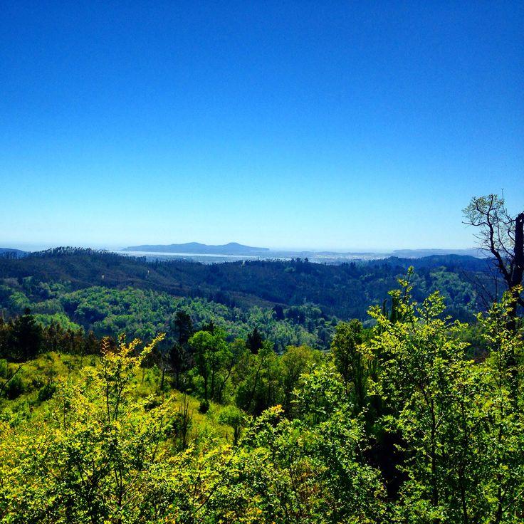 Hermosa vista desde el mirador lo rojas desde la Reserva Nacional de Nonguen hacias las Tetas del Bio-bio