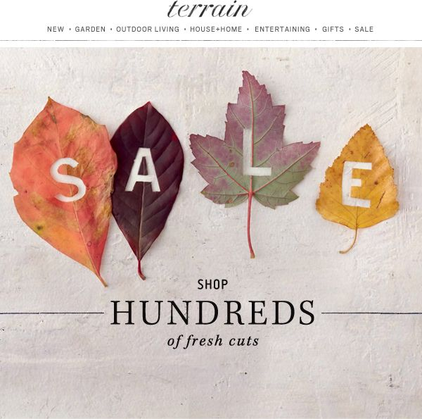 #Fall #sale at #shopterrain September 23