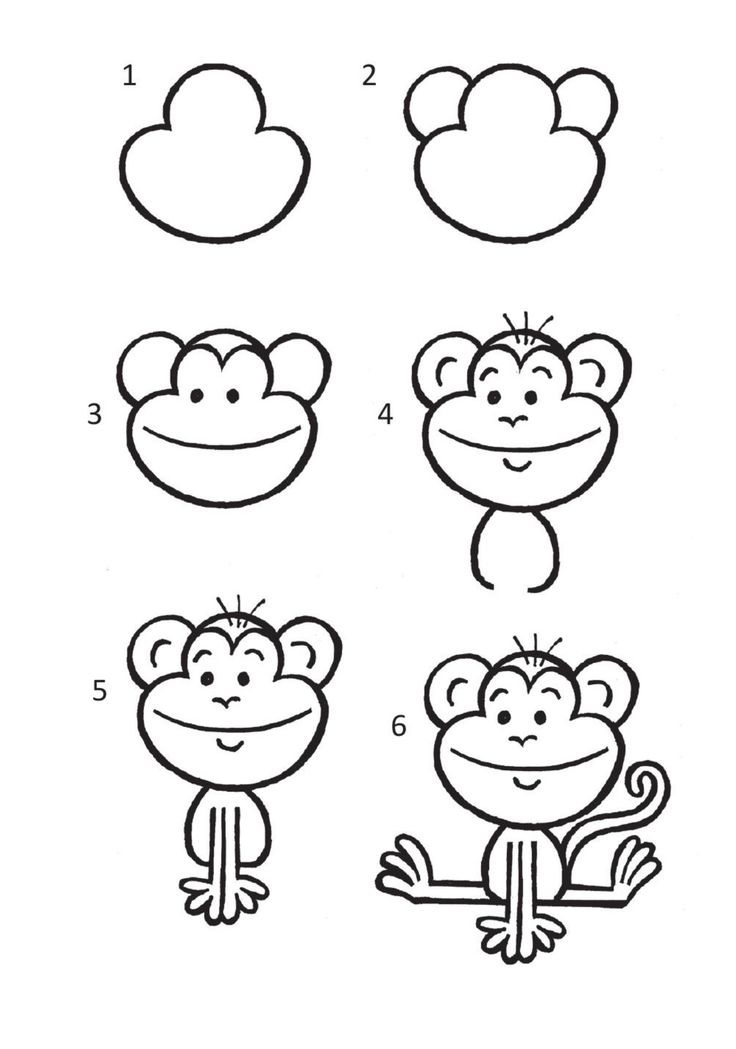 drawing cartoon zoo draw animals drawings easy animal simple basic step doodle abe tutorial beginners paintingvalley cartoons bohant exercise