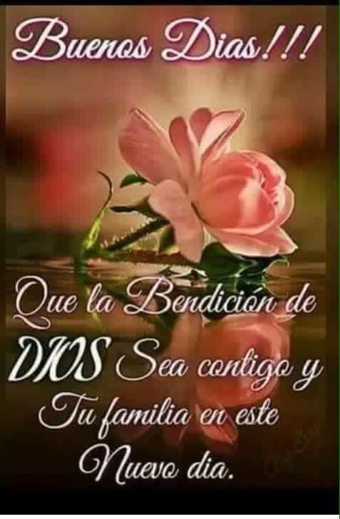 amig@s muy buenos díass..