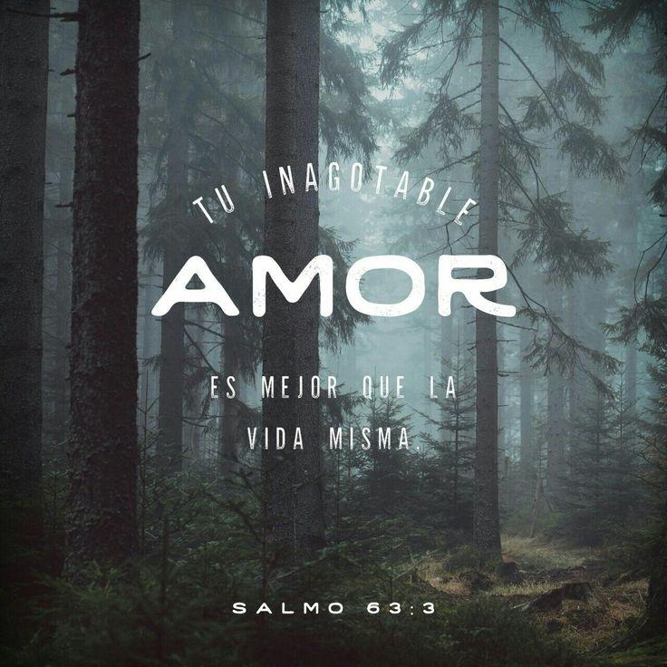 Tu amor inagotable es mejor que la vida misma, ¡cuánto te alabo! Te alabaré mientras viva, a ti levantaré mis manos en oración. Salmos 63:3-4