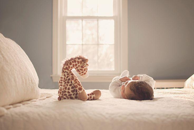 » Kerry Varnum Photography | New Hampshire Newborn and Children Portrait Photographer