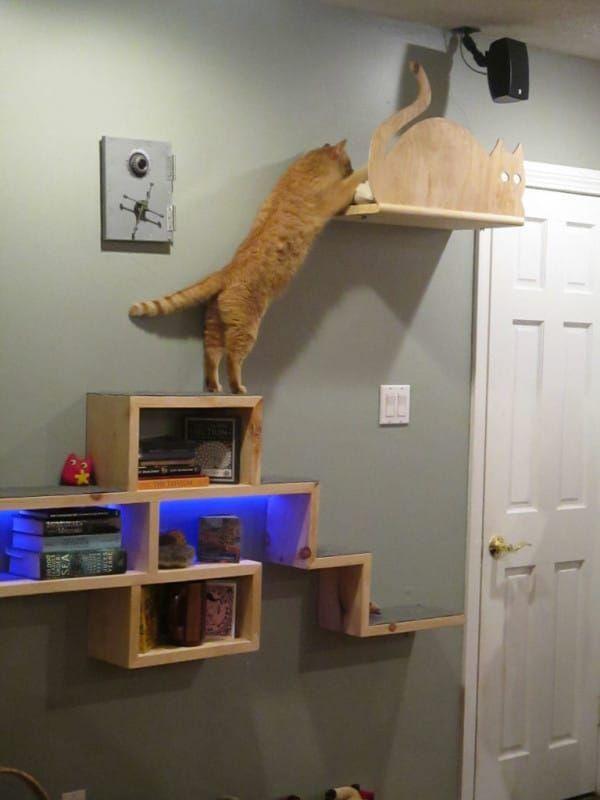 Cet homme a créé un petit coin détente pour son chat à partir de ce plan…L…