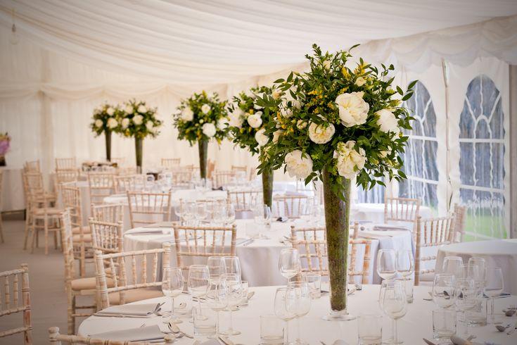 9 best indian wedding venues images on pinterest indian bridal white wedding junglespirit Gallery