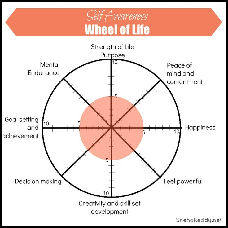 buddhist wheel of life template - best 25 wellness wheel ideas on pinterest life balance