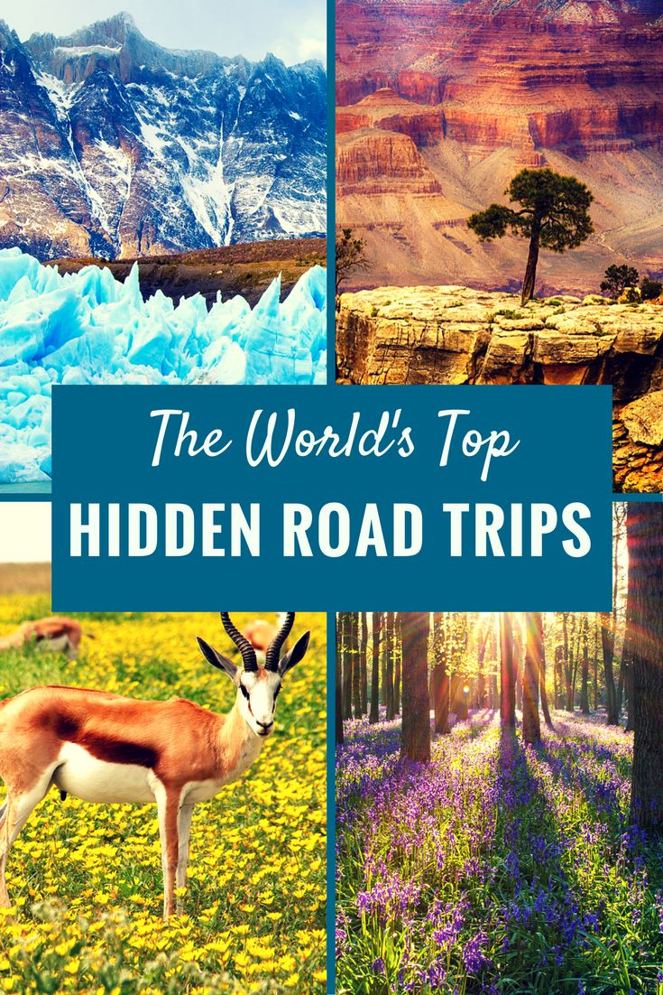 Best Road Trips in the World - Discover the road trips you need to take before you die!