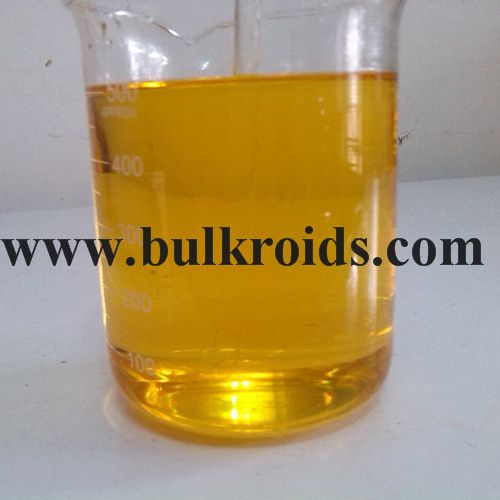 Injectable Semi Finished Steroid Oil Testosterone Undecanoate  250mg/ml
