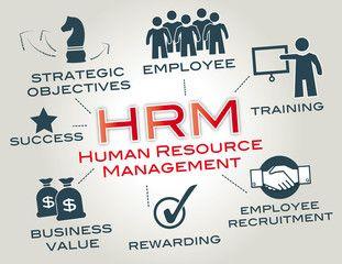 Vektor: Human resource management, HRM