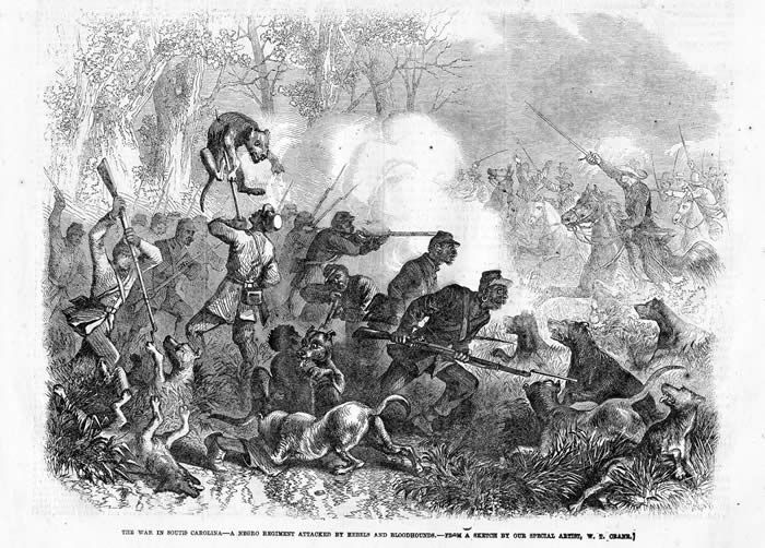 The march of sherman and the 105000 union soldiers