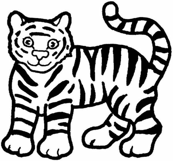 Simple Coloring Pages Draw A Tiger A Cute Cartoon Drawing Of Tiger