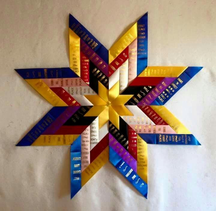 Project for all of your 4-H ribbons...