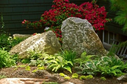 Big boulders ferns hosta in a garden that is shaded much - Landscaping with large rocks ...