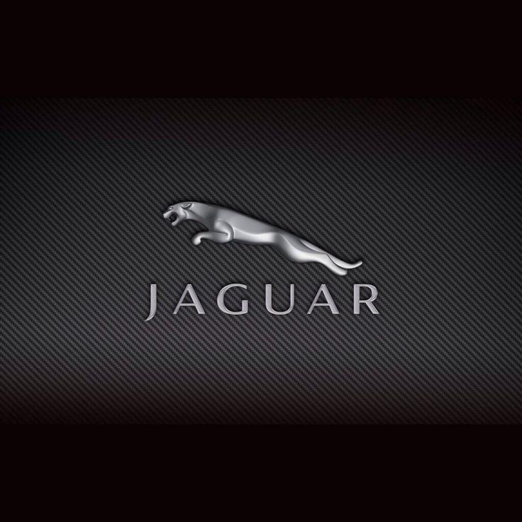 The 25+ Best Jaguar Car Symbol Ideas On Pinterest