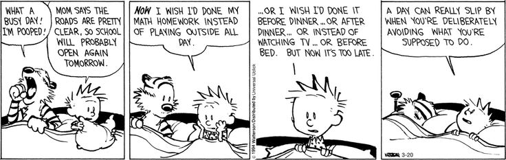 ...A day can really slip by when you're deliberately avoiding what you're supposed to do. ~ Calvin and Hobbes by Bill Watterson