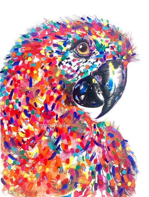 Feisty Red Macaw | Macaw Painting