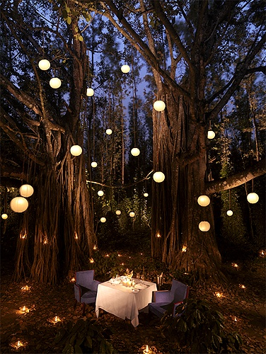 Romantic Garden Dining