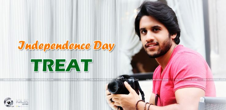 Naga Chaitanya's Independece Day Treat http://www.iqlikmovies.com/news/article/2014/08/08/oka-laila-kosam-audio-on-15th-august/4989