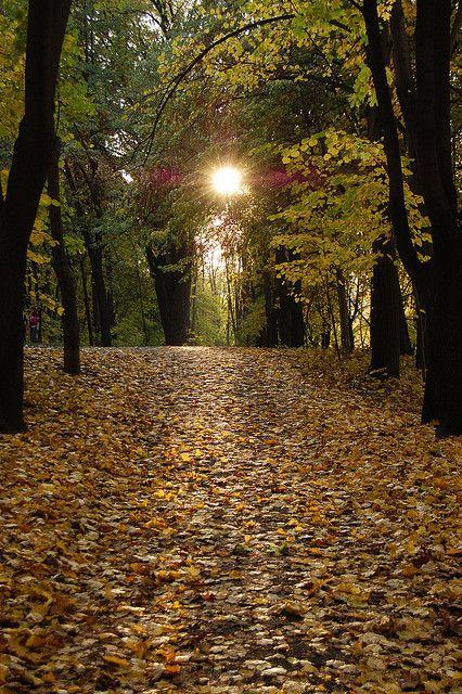 Autumn, Valley of the Mills park, Chisinau, Moldova | Flickr - Photo Sharing!