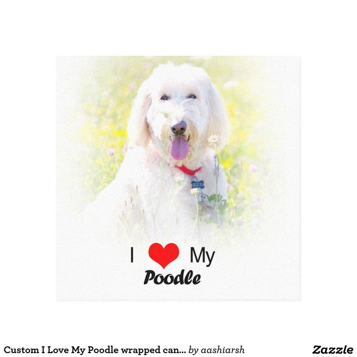#Custom I #Love My #Poodle #wrapped canvas #Canvas Print #poodles #dog #doglovers #animal