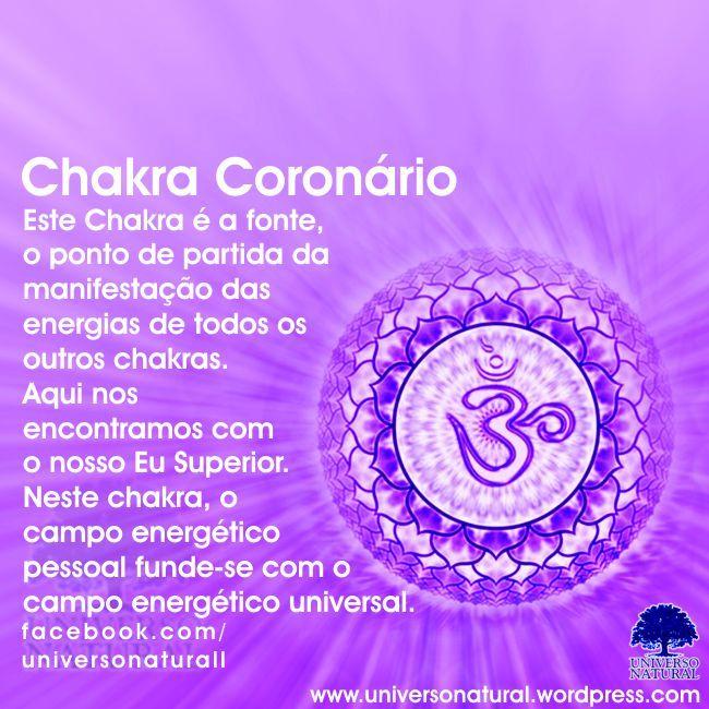 Este Chakra é a fonte, o ponto de partida da manifestação das energias de todos…