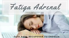 Fatiga Adrenal guia para recuperar tu energia - Dieta Paleo